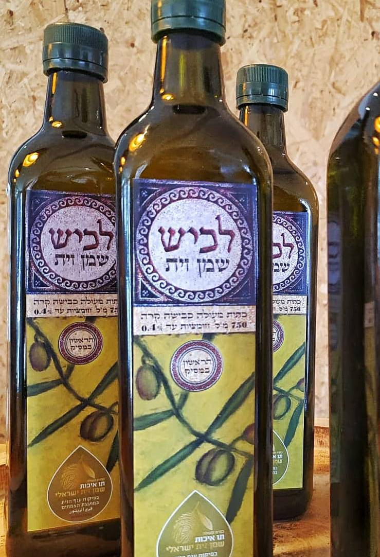 Lachish olive oil