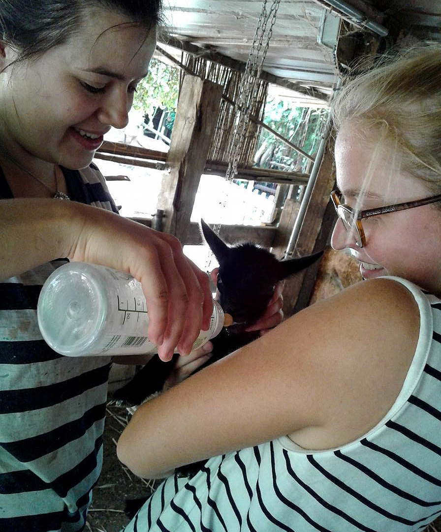 German volunteers, Johanna and Marie at the Petting Zoo.